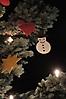 2015_Weihnachtsbaum Singen_13